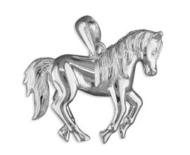 PIPPA pony 4gm 8.24g1117_mn